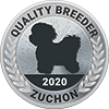 Shichon-Dog-Breed